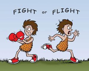 Fight_or_flight1